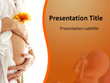 Pregnancy Stages Medical PowerPoint Template