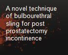 A novel technique of bulbourethral sling for post prostatectomy incontinence powerpoint presentation