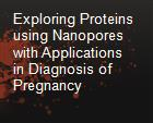 Exploring Proteins using Nanopores with Applications in Diagnosis of Pregnancy powerpoint presentation