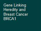 Gene Linking Heredity and Breast Cancer BRCA1  powerpoint presentation
