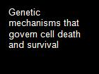 Genetic mechanisms that govern cell death and survival powerpoint presentation