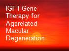 IGF1 Gene Therapy for Agerelated Macular Degeneration powerpoint presentation