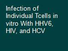 Infection of Individual Tcells in vitro With HHV6, HIV, and HCV powerpoint presentation