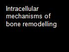 Intracellular mechanisms of bone remodelling powerpoint presentation