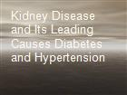 Kidney Disease and Its Leading Causes Diabetes and Hypertension powerpoint presentation