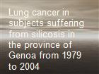 Lung cancer in subjects suffering from silicosis in the province of Genoa from 1979 to 2004  powerpoint presentation