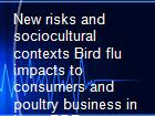 New risks and sociocultural contexts Bird flu impacts to consumers and poultry business in Laos PDR powerpoint presentation