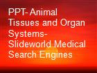 PPT- Animal Tissues and Organ Systems- Slideworld Medical Search Engines powerpoint presentation
