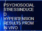 PSYCHOSOCIAL STRESSINDUCED HYPERTENSION RESULTS FROM IN VIVO EXPRESSION OF LONGTERM POTENTIATION IN RAT SYMPATHETIC GANGLIA powerpoint presentation