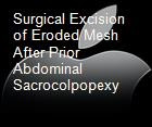 Surgical Excision of Eroded Mesh After Prior Abdominal Sacrocolpopexy powerpoint presentation