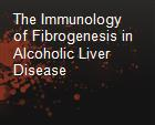 The Immunology of Fibrogenesis in Alcoholic Liver Disease powerpoint presentation