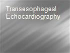 Transesophageal Echocardiography powerpoint presentation