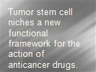 Tumor stem cell niches a new functional framework for the action of anticancer drugs. powerpoint presentation